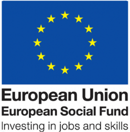 ESF Logo - The Logo that is used to denote anything related to the ESF - Europea
